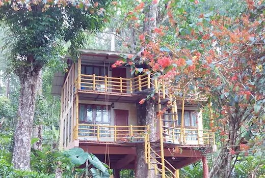 <p>Jungle Treehouse Munnar: A Signature of Excellence</p>