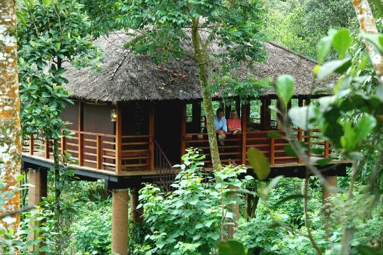 <p><strong>Carmelia Haven Treehouse, Thekkady</strong></p>