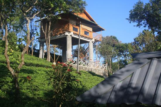 <p><strong>HOLIDAY VAGAMON TREEHOUSE</strong></p>