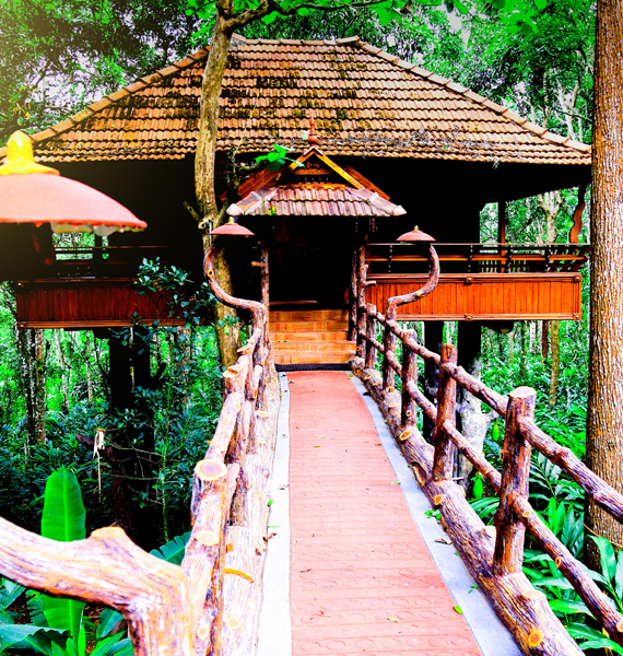 kalpavanam-treehouse-resort