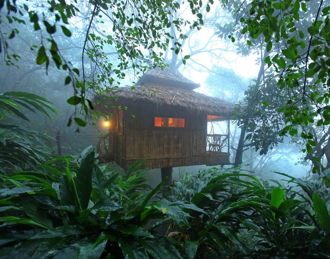 <p>Vanya Tree House Thekkady</p>