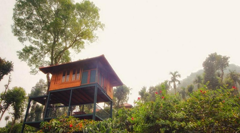 marmalade-springs-wayanad-treehouse