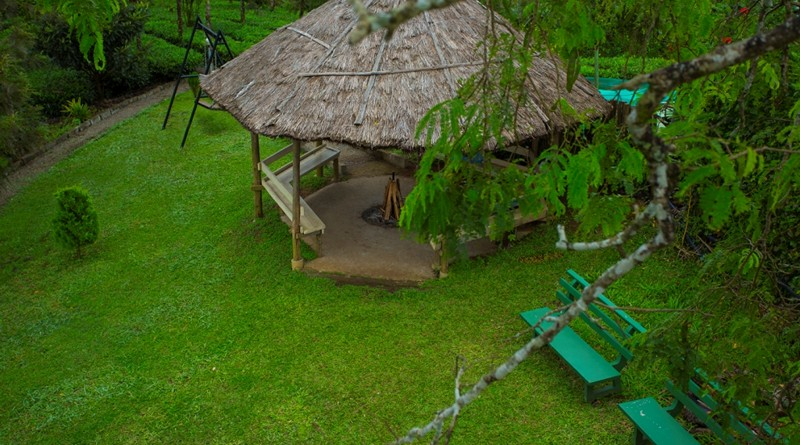 thekkady-treehouse-package