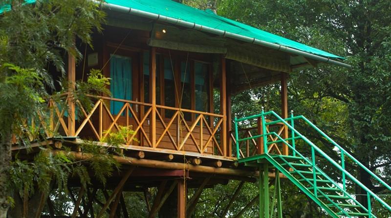 dreamcatcher-resort-munnar-treehouse-honeymoon