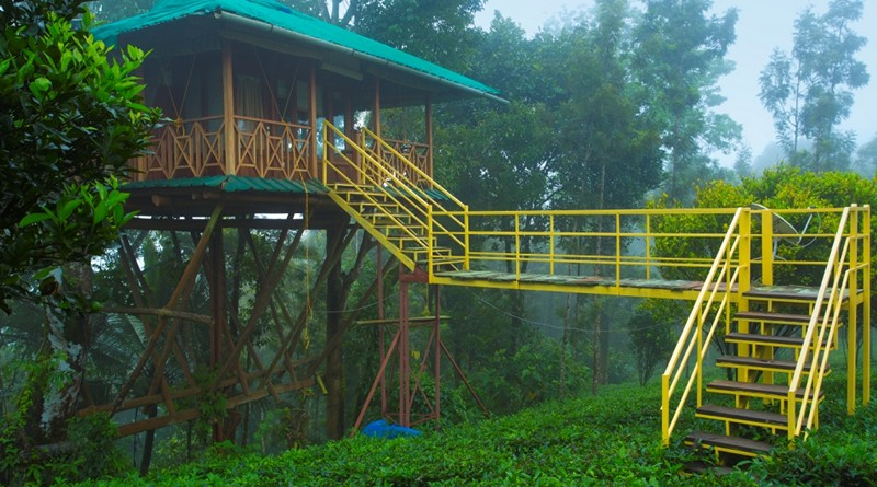 Dreamcatcher Resort Munnar Treehouse Honeymoon