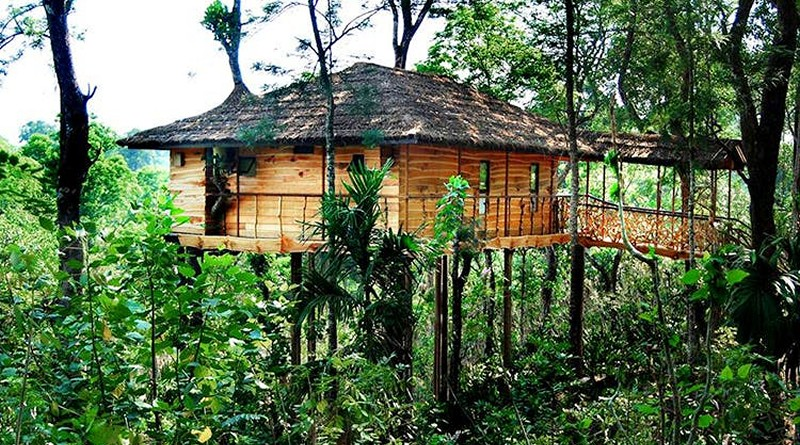 tranquil-resort-wayanad-treehouse