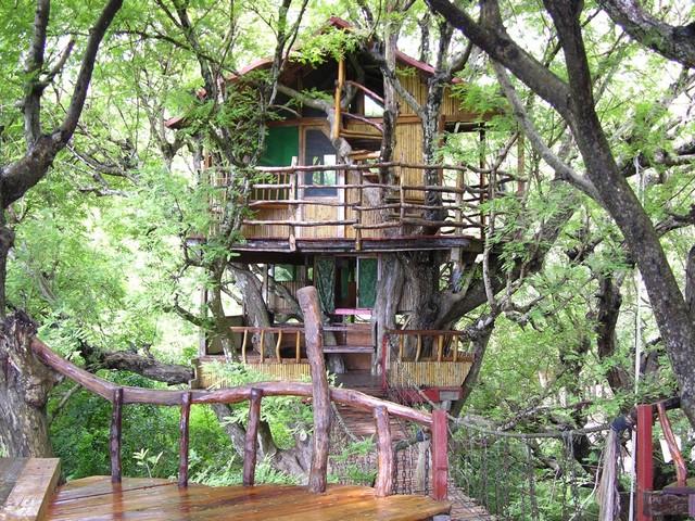 SanyaNanshan Treehouse