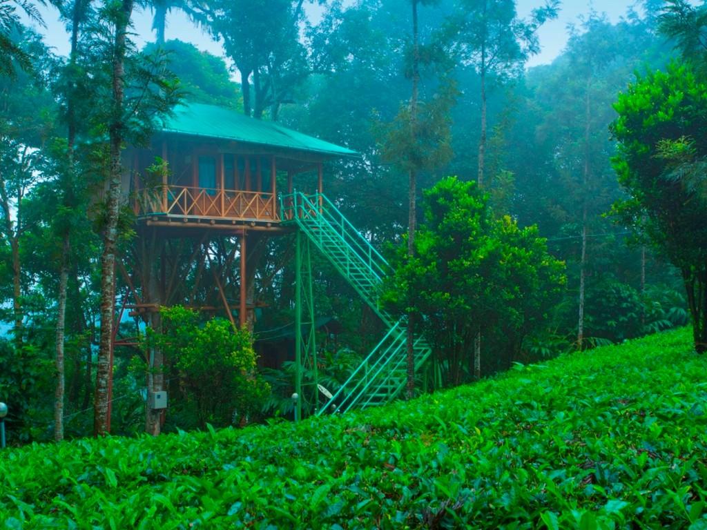 treehouse resorts in kerala