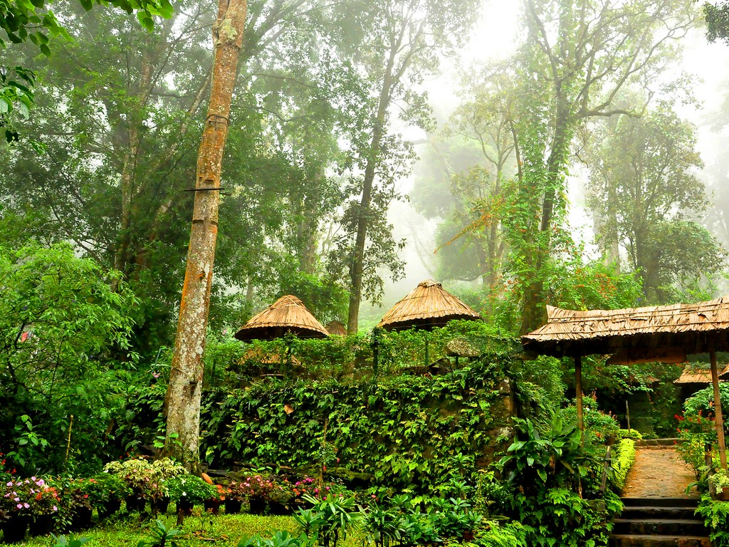 Best Resorts in Munnar for Family 1